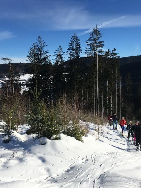 Winterwandertag 2019